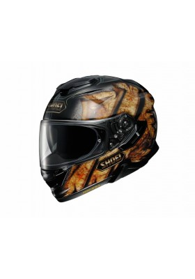 GT-AIR 2 DEVIATION TC-9 GOLD BLACK