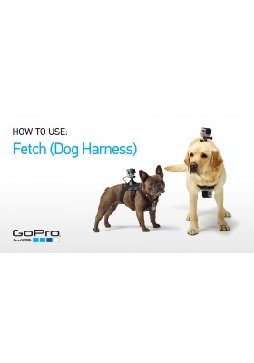 FETCH DOG HARNESS